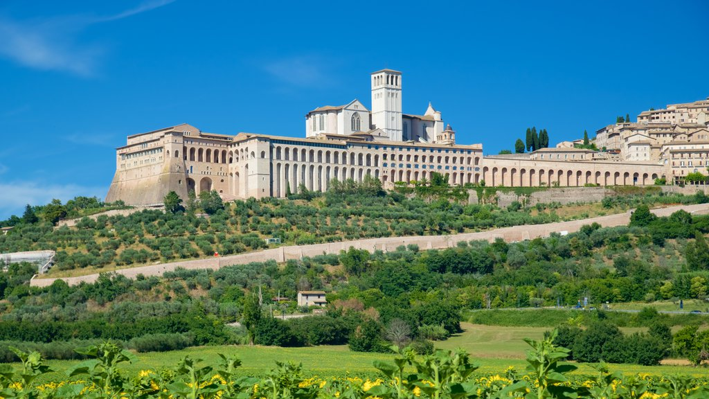 Assisi which includes heritage architecture and farmland