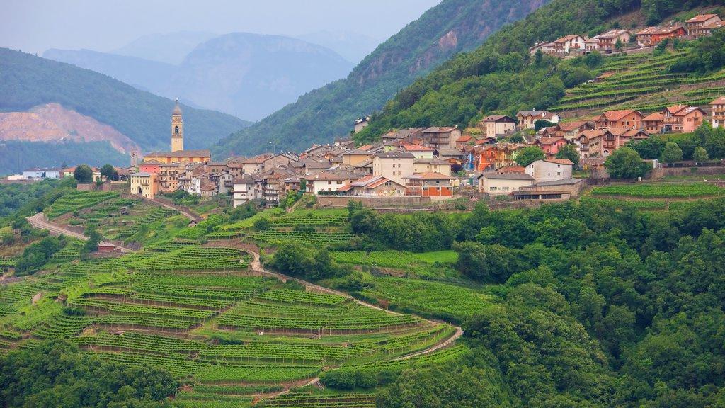 Trentino-Alto Adige ofreciendo tierras de cultivo y una pequeña ciudad o pueblo