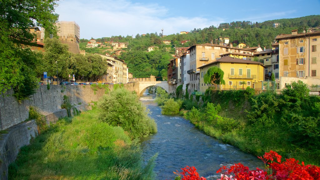 Rovereto featuring a river or creek and flowers