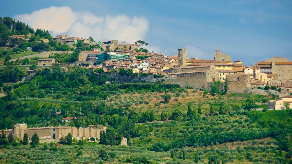 Cortona featuring a city and farmland