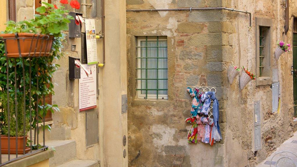 Cortona which includes heritage architecture