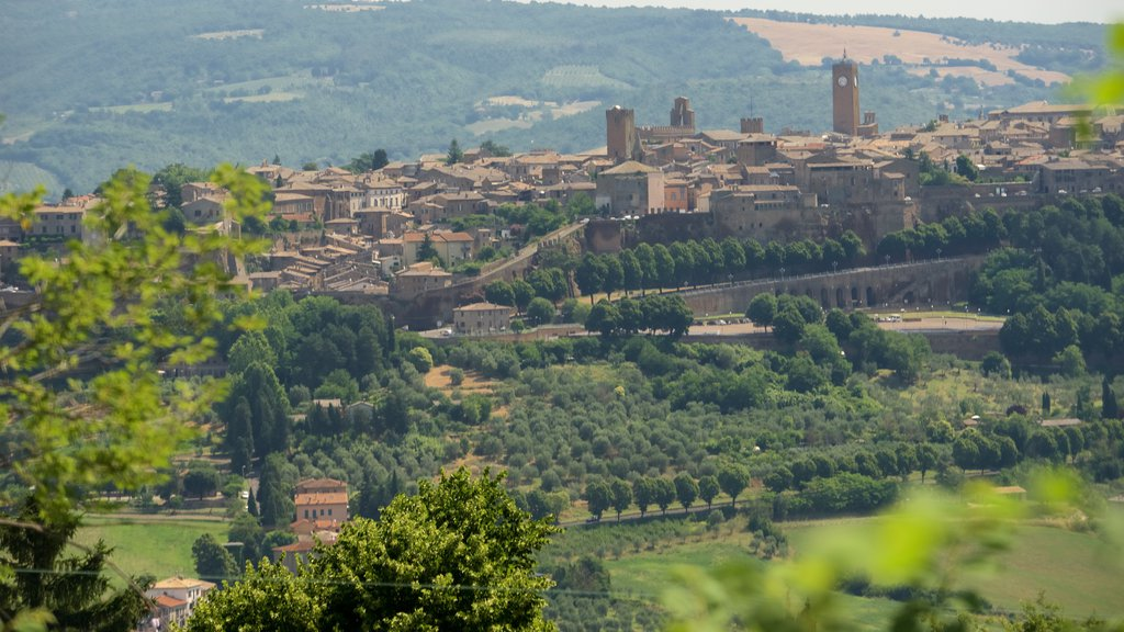 Orvieto which includes farmland and a city