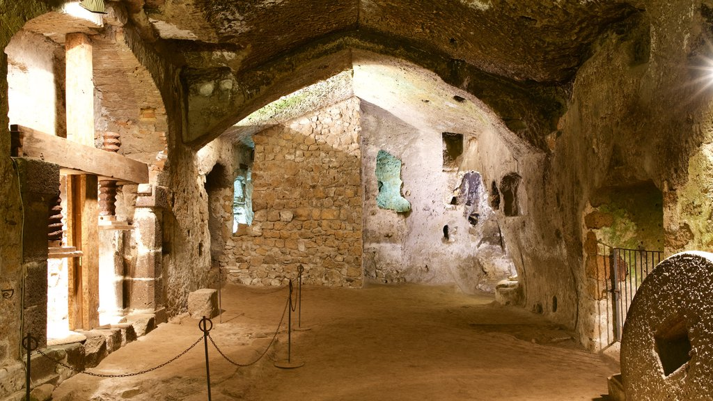 Etruscan Orvieto Underground featuring interior views and building ruins