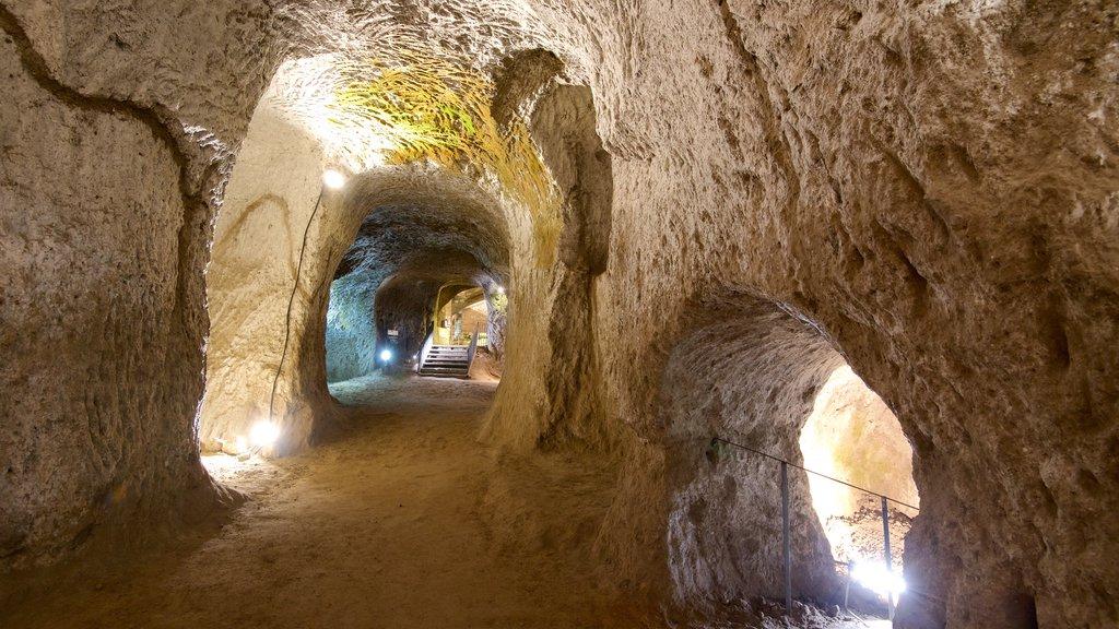 Etruscan Orvieto Underground featuring a ruin and interior views