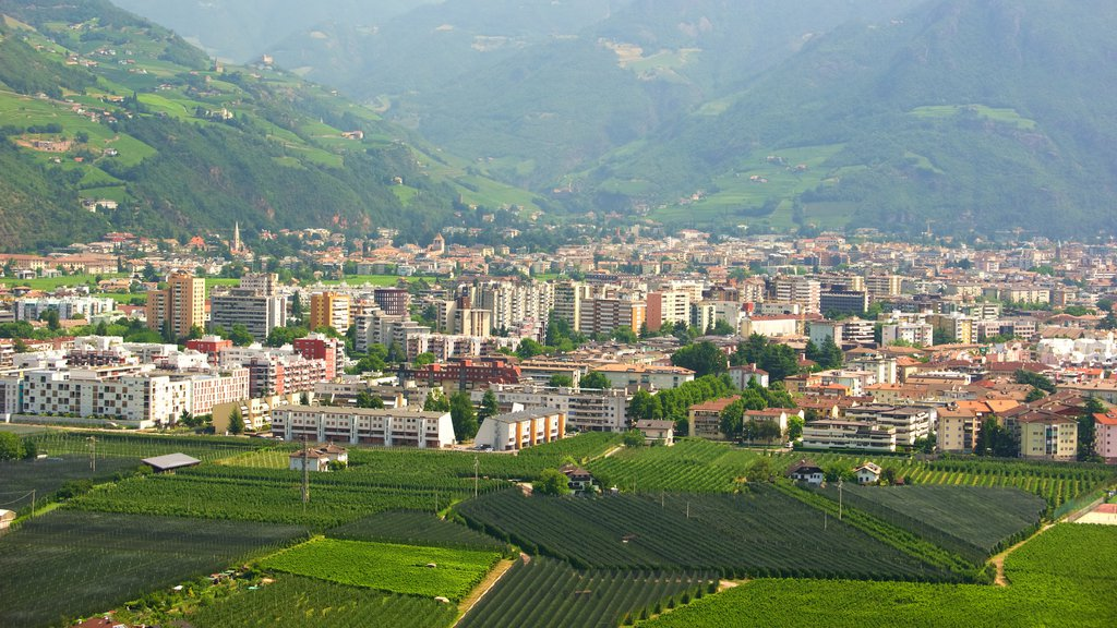 Bolzano showing a city and farmland