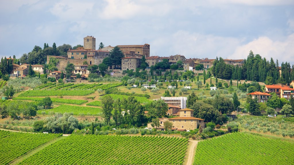 Panzano in Chianti featuring a small town or village and heritage architecture