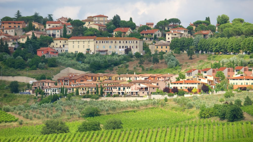 Panzano in Chianti which includes a city, heritage architecture and a small town or village