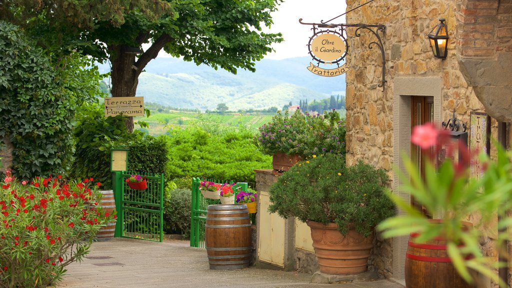 Panzano in Chianti showing flowers, a small town or village and signage