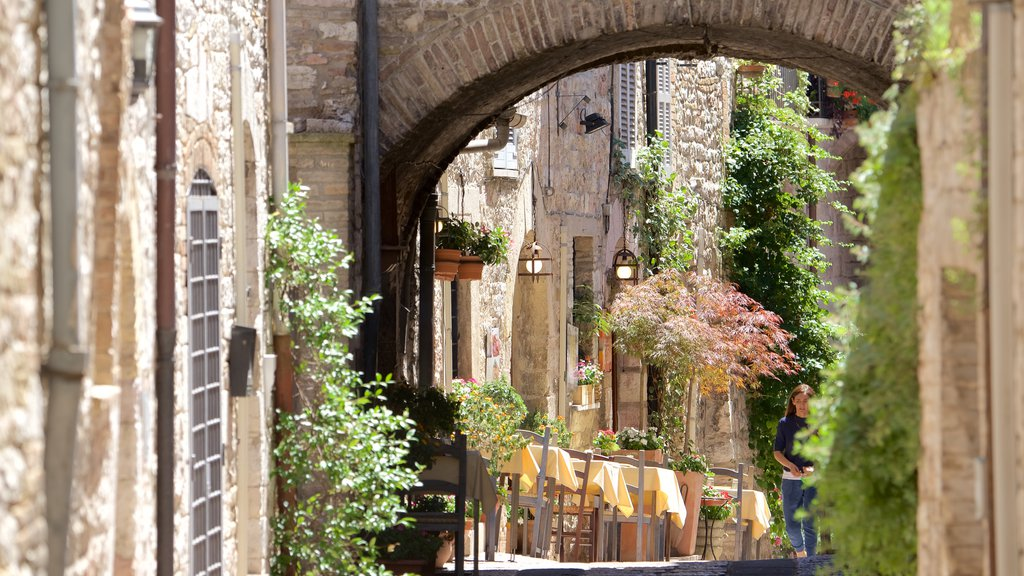 Assisi featuring street scenes and outdoor eating