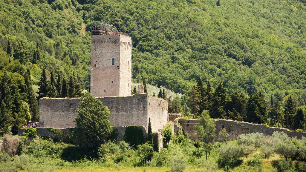 Rocca Maggiore which includes heritage elements
