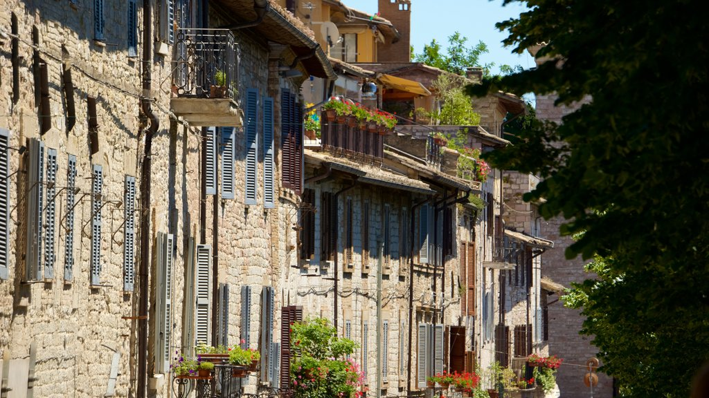 Assisi showing heritage architecture and a small town or village