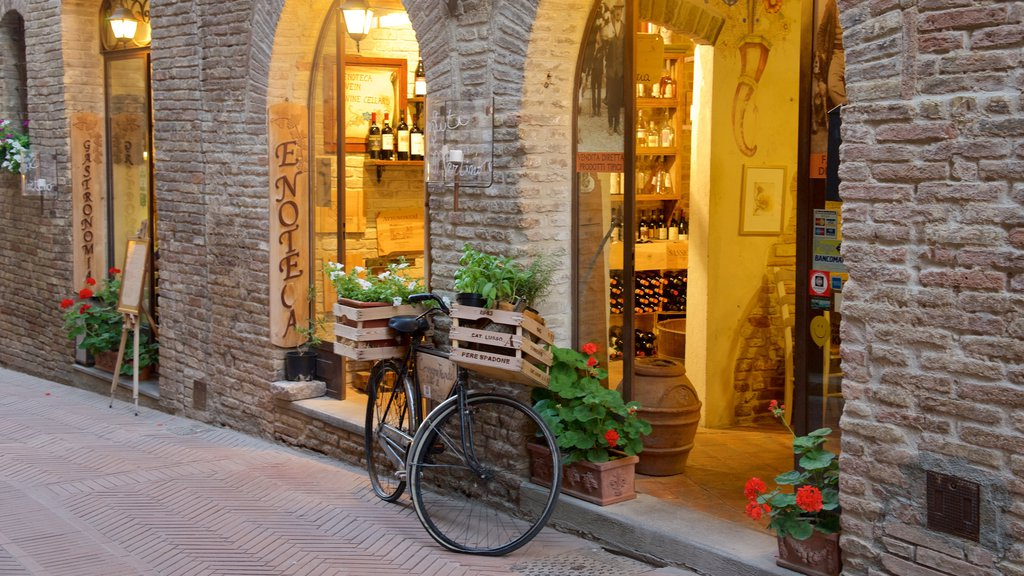 San Gimignano featuring street scenes and flowers