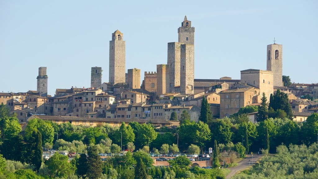 San Gimignano showing a small town or village, city views and a city