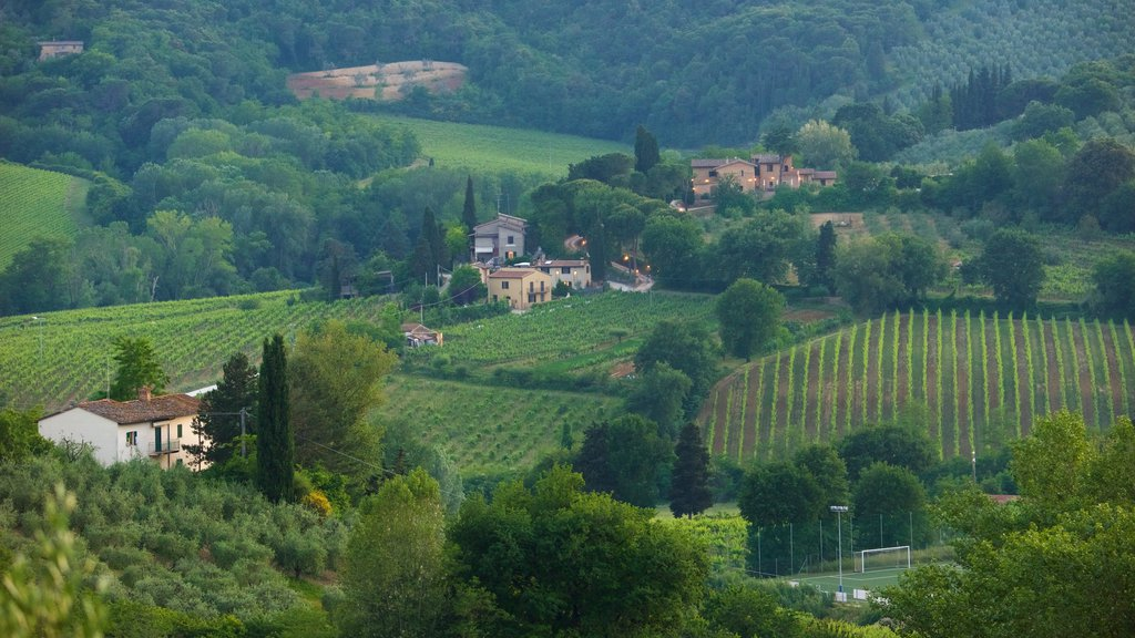 San Gimignano which includes a house and farmland