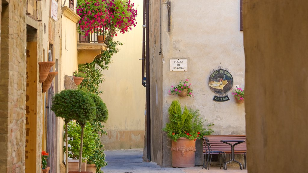 Pienza showing street scenes and a small town or village