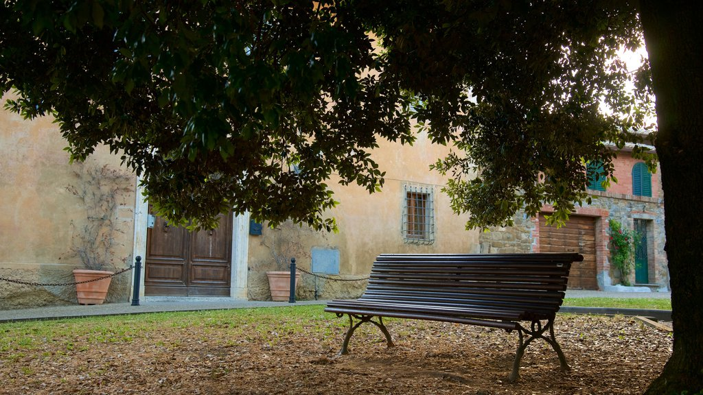 Montalcino featuring a park