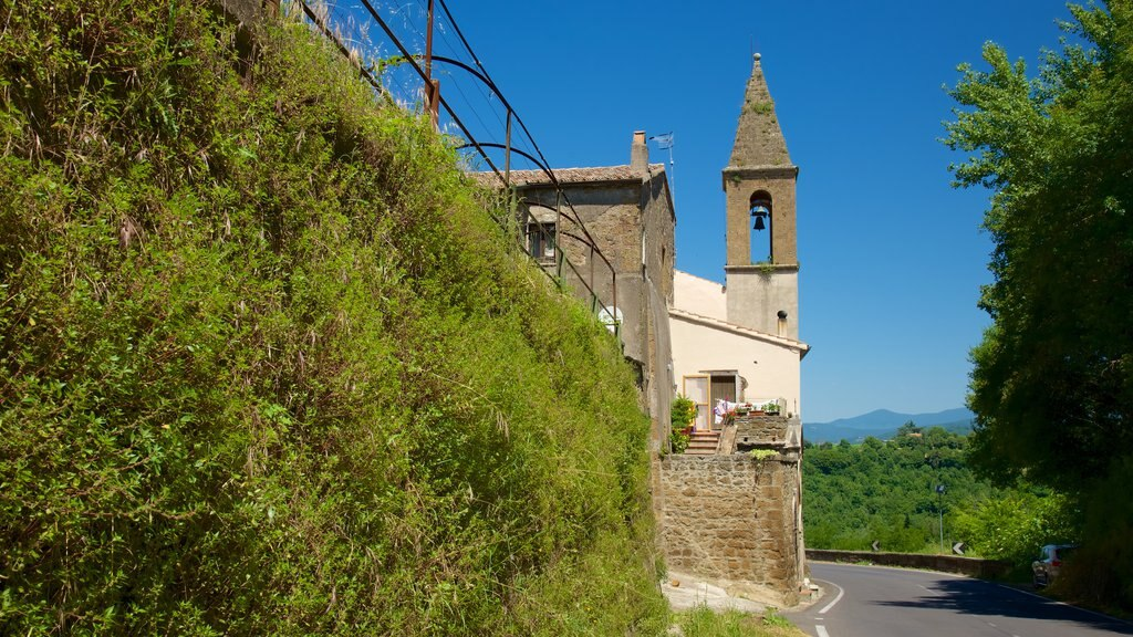Pitigliano showing a small town or village