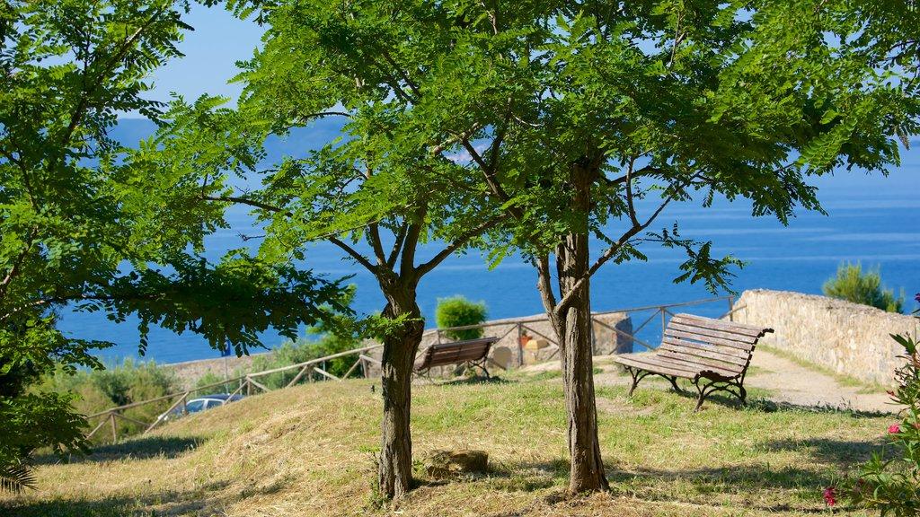 Talamone ofreciendo una ciudad costera y vistas generales de la costa