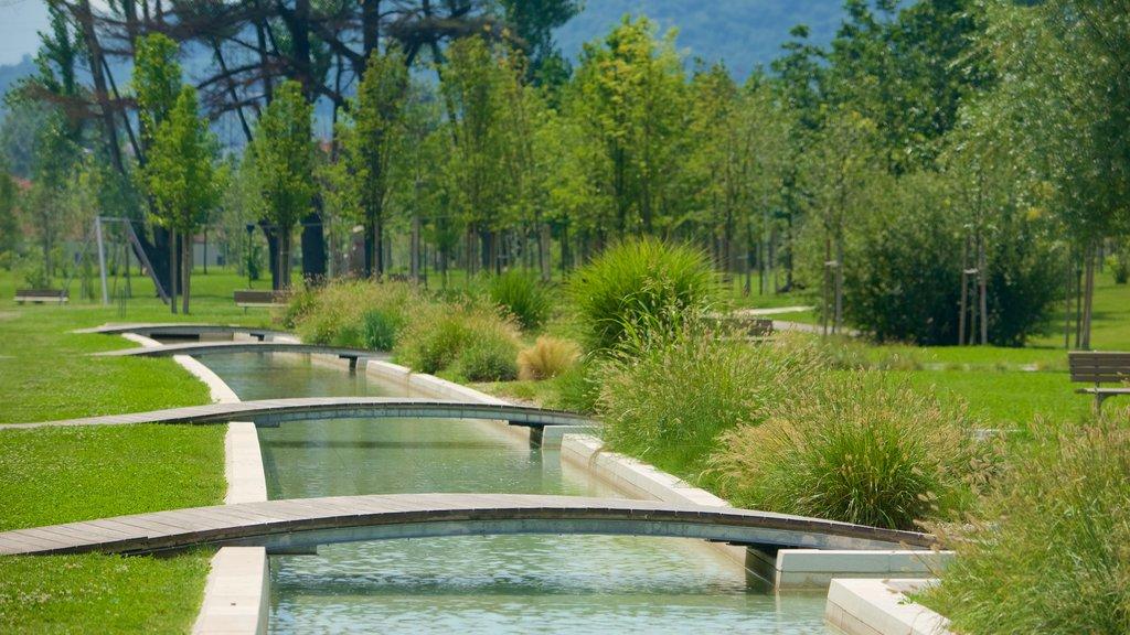 Trento showing a pond, a garden and a bridge