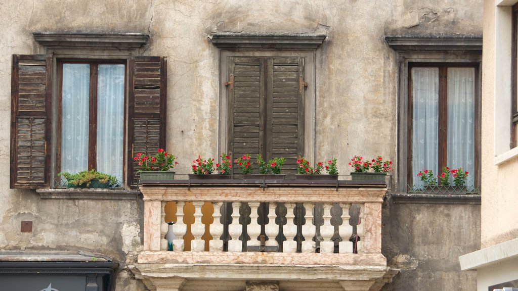 Trento showing heritage architecture