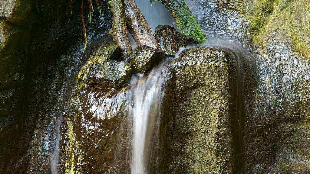 Museo Tridentino di Scienze Naturali showing a waterfall