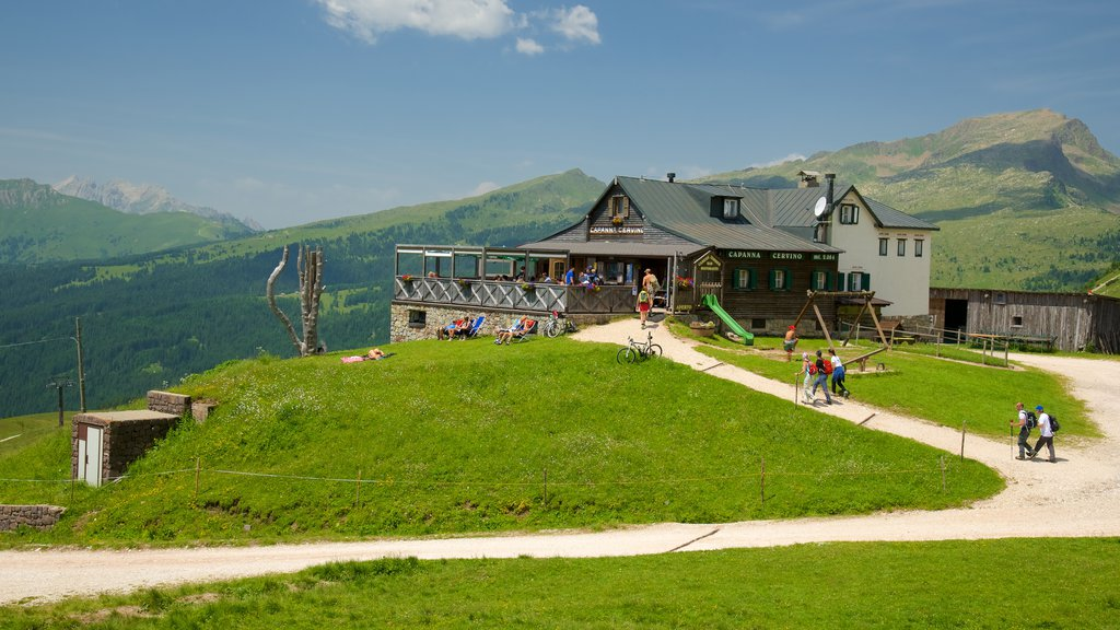 Passo Rolle featuring cafe scenes and tranquil scenes as well as a small group of people