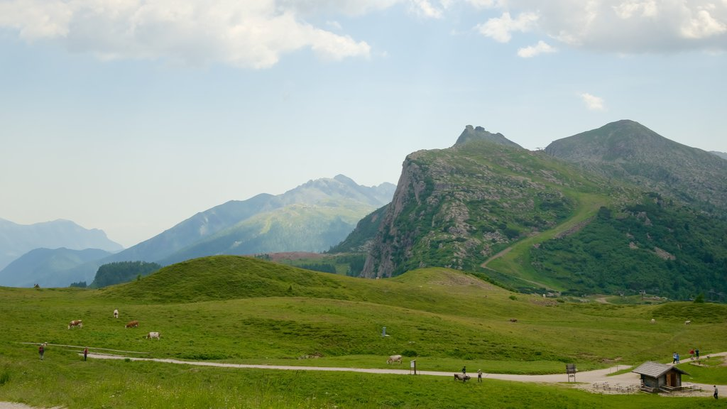 Passo Rolle which includes farmland, land animals and mountains