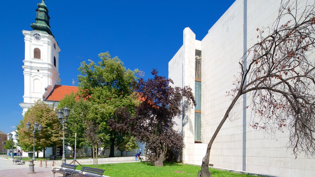 National Theatre of Serbia featuring a church or cathedral, heritage architecture and a city