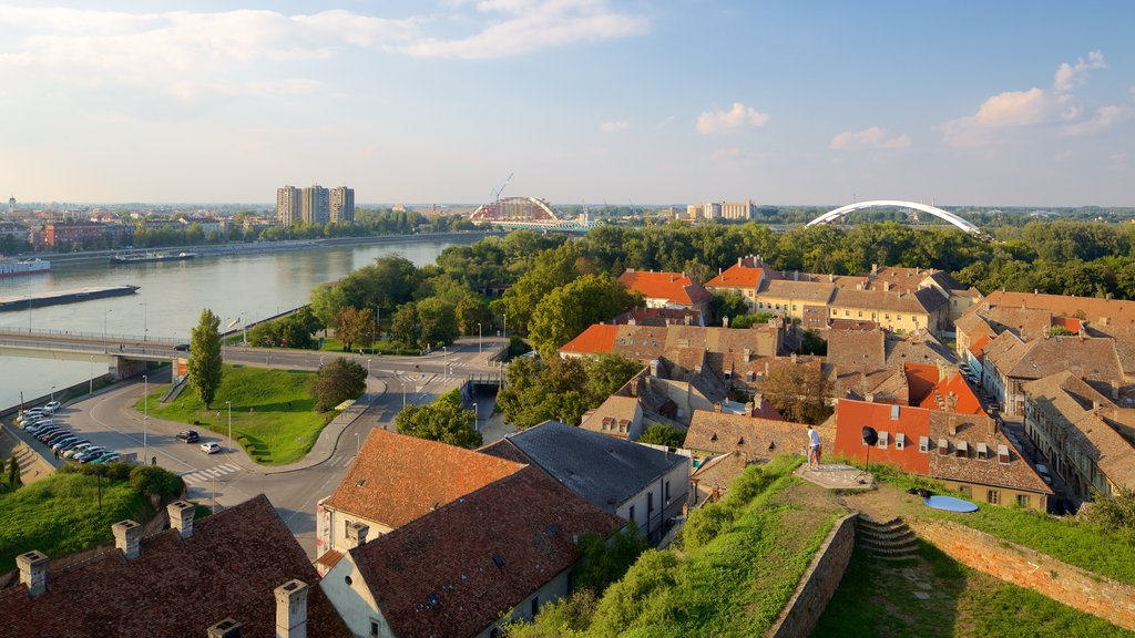 Novi Sad featuring a house, a city and a bridge