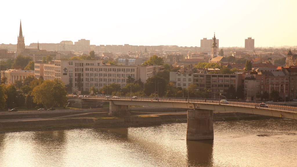 Novi Sad which includes a city, a river or creek and city views