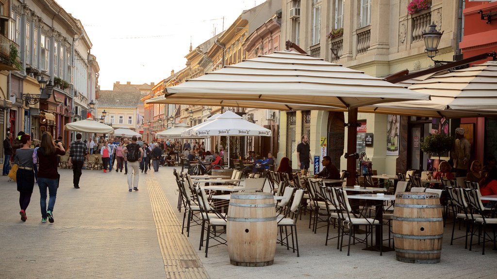Novi Sad featuring street scenes, a city and outdoor eating
