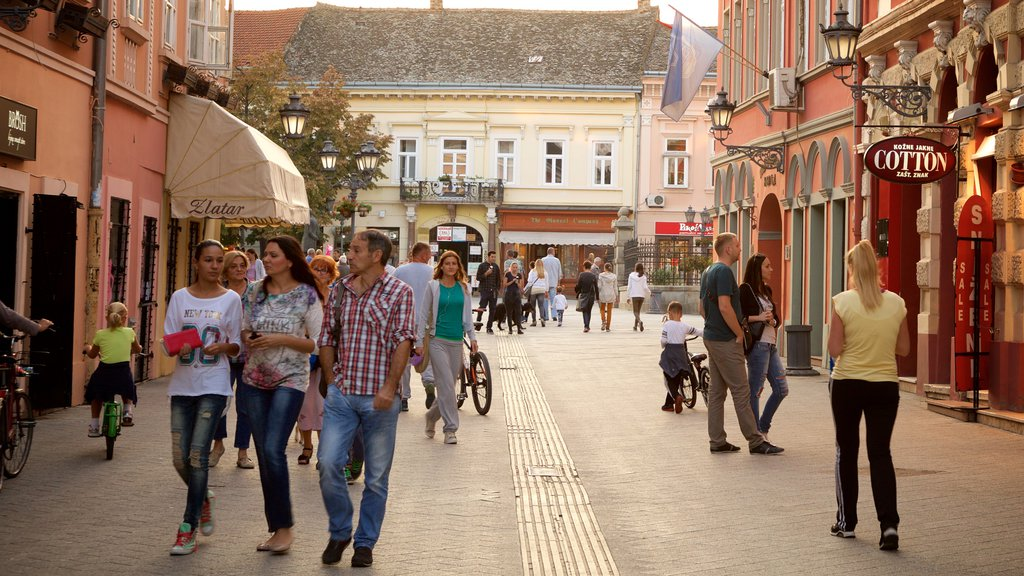 Novi Sad which includes a sunset, a city and cafe lifestyle