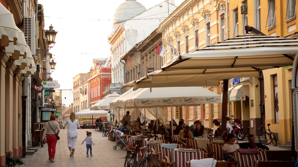 Novi Sad showing outdoor eating, cafe scenes and a city