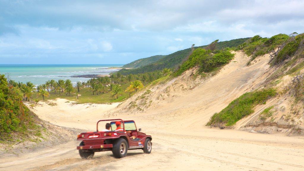 Baia Formosa showing 4 wheel driving, general coastal views and a beach