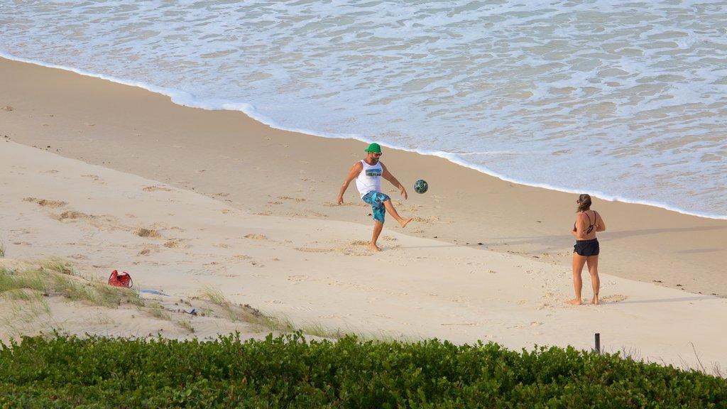 Pipa caracterizando paisagens litorâneas e uma praia assim como um casal