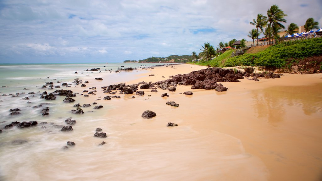 Pirangi Beach which includes a sandy beach, tropical scenes and general coastal views