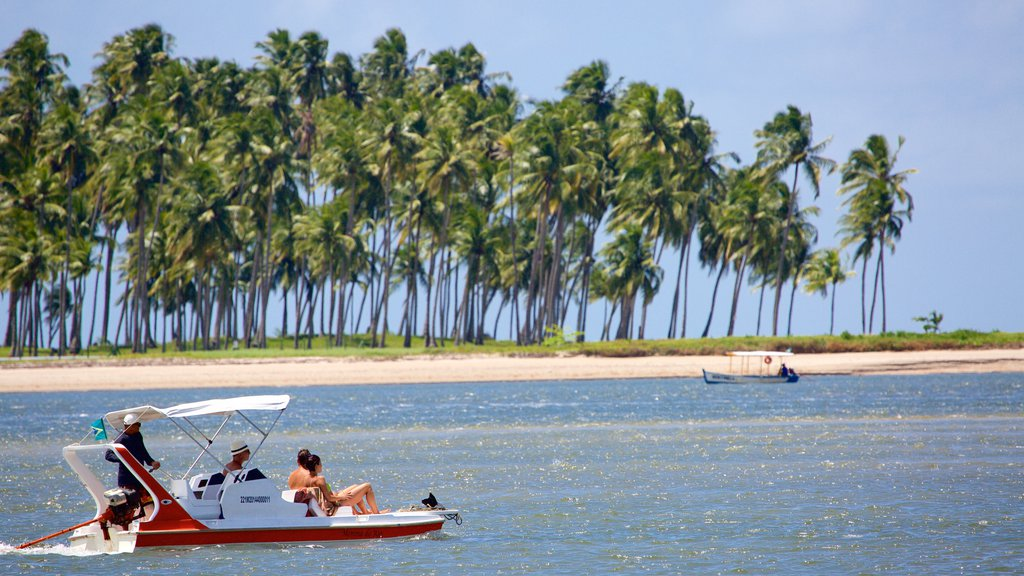 Tamandare showing a beach, tropical scenes and boating