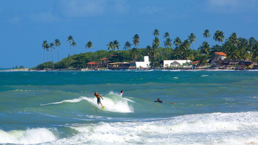 Maracaipe Beach showing surf, tropical scenes and a coastal town