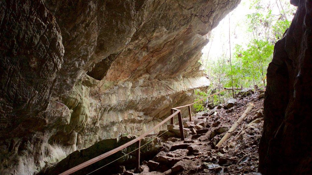 Grutas de São Miguel caracterizando cavernas