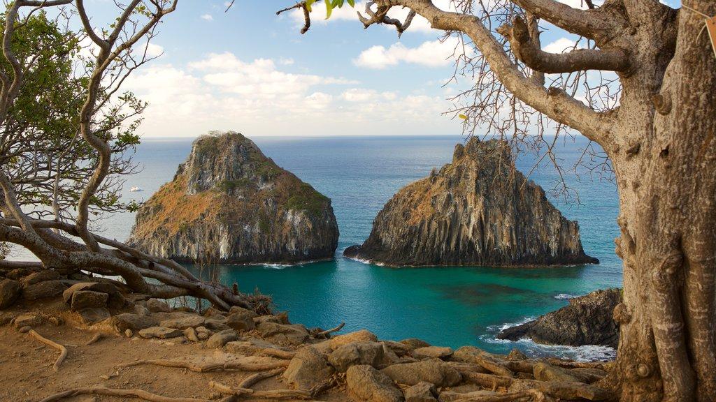 Morro Dois Irmãos que inclui litoral rochoso e paisagens litorâneas