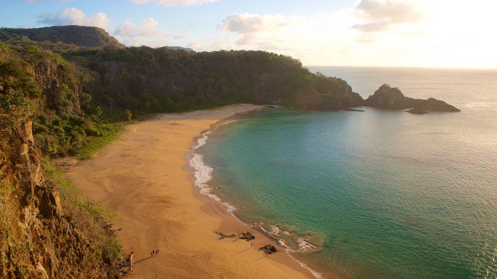 Praia do Sancho caracterizando uma praia de areia e paisagens litorâneas