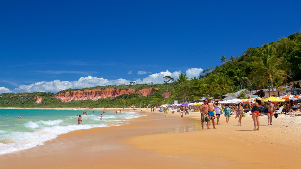Pitinga Beach featuring a sandy beach, waves and tropical scenes