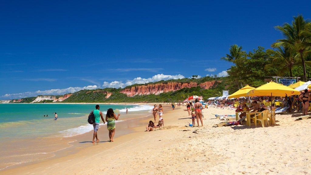 Pitinga Beach featuring general coastal views, tropical scenes and a beach