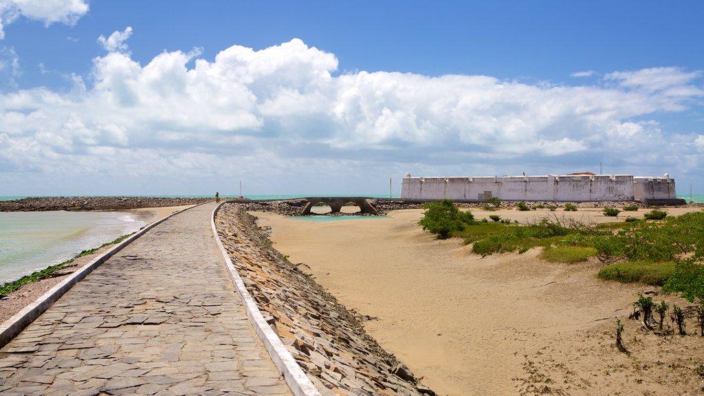Forte dos Três Reis mostrando paisagens litorâneas e elementos de patrimônio