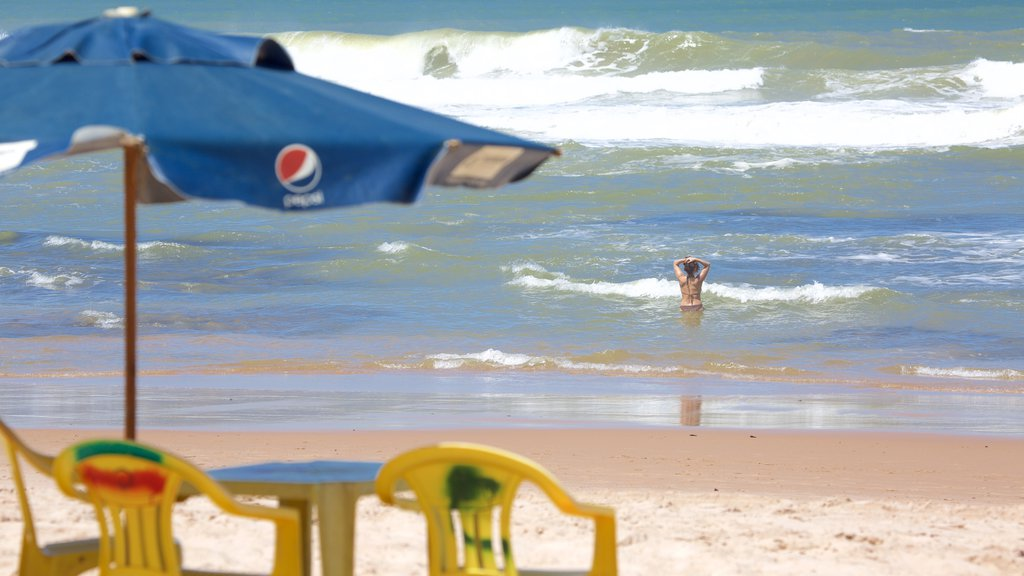 Flamengo Beach caracterizando ondas, natação e paisagens litorâneas