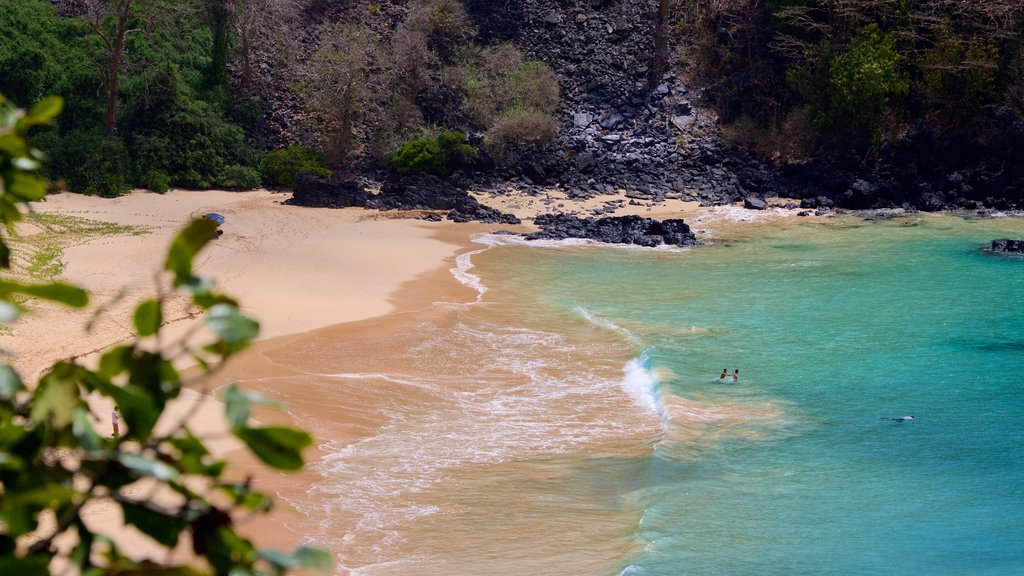 Sancho Beach showing rugged coastline, a beach and swimming