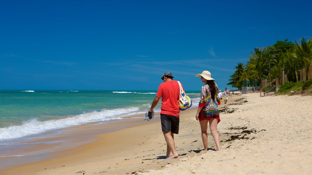 Pitinga Beach which includes general coastal views, tropical scenes and a sandy beach