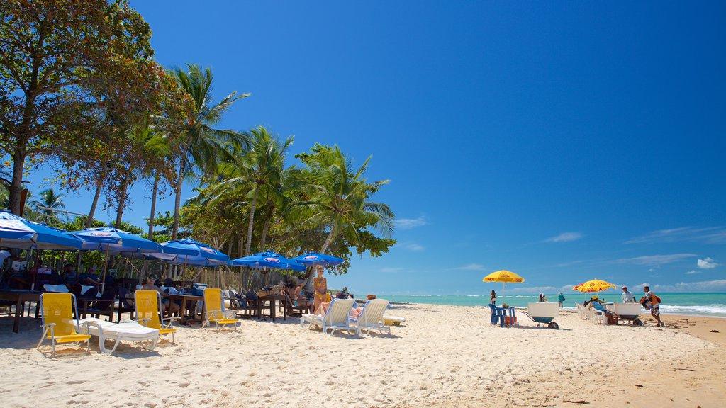 Pitinga Beach showing a sandy beach and general coastal views