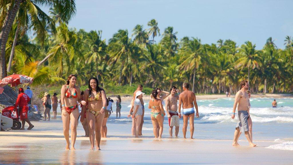Praia de Ipioca caracterizando uma praia de areia, paisagens litorâneas e cenas tropicais