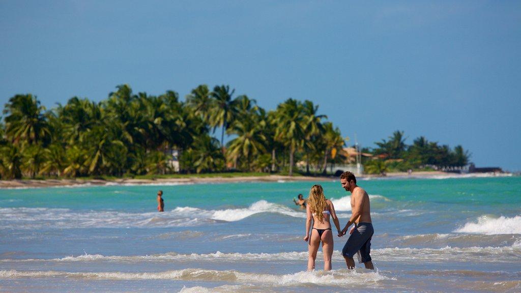 Praia de Ipioca que inclui cenas tropicais, paisagens litorâneas e surfe